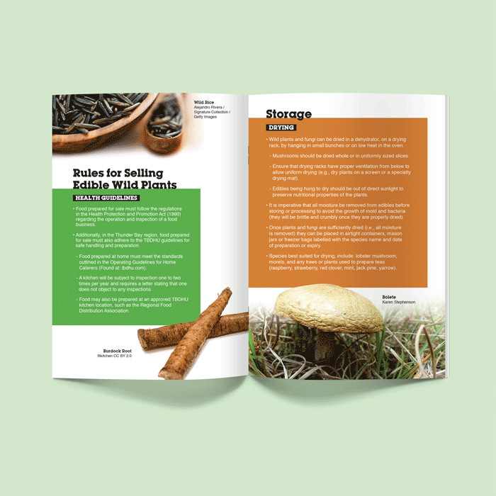 Ontario Nature Booklet Design on Rules for Selling and Storing Edible Wild Plants