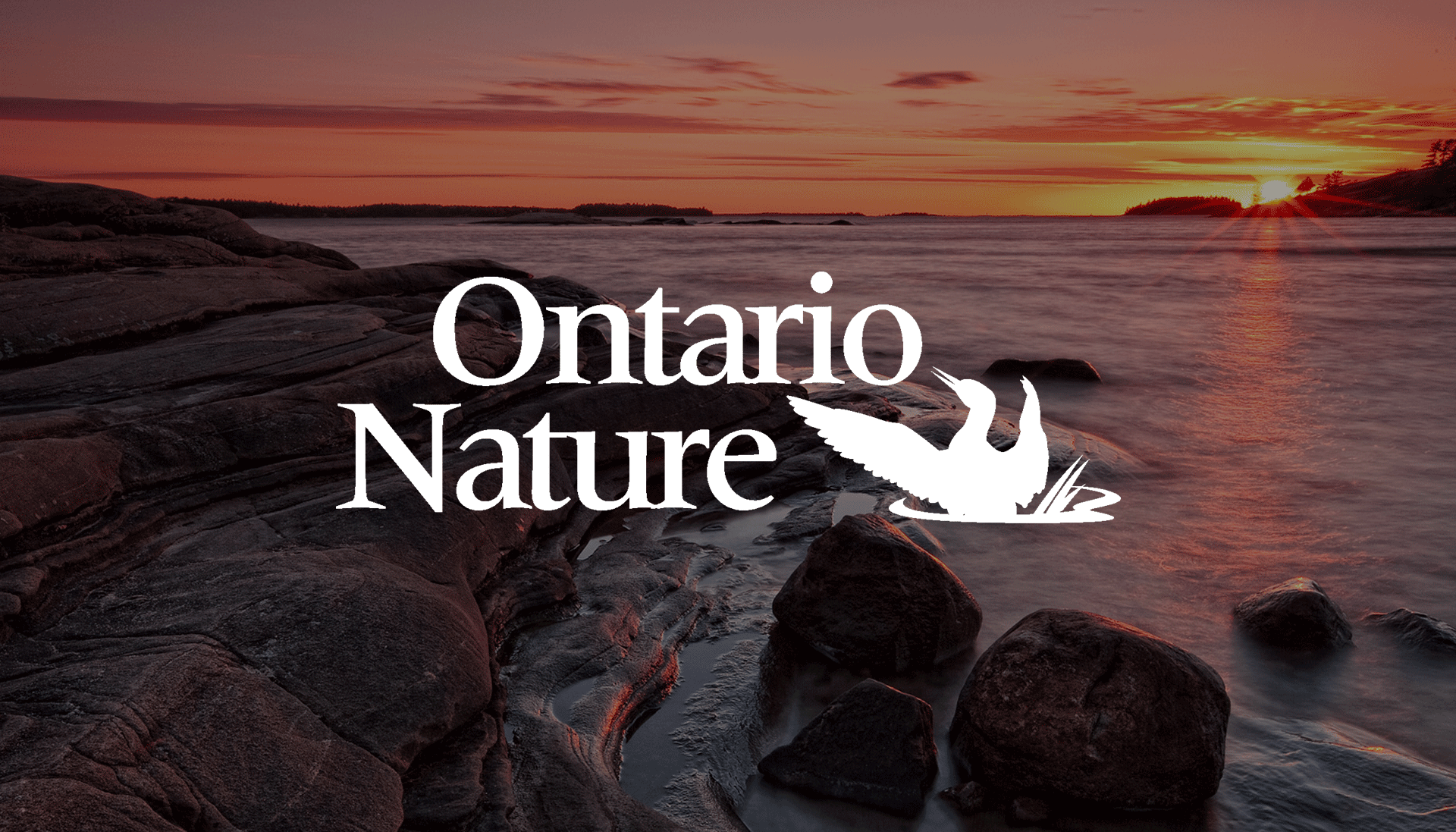 Ontario Nature Logo overlaying sunset and rocky shoreline